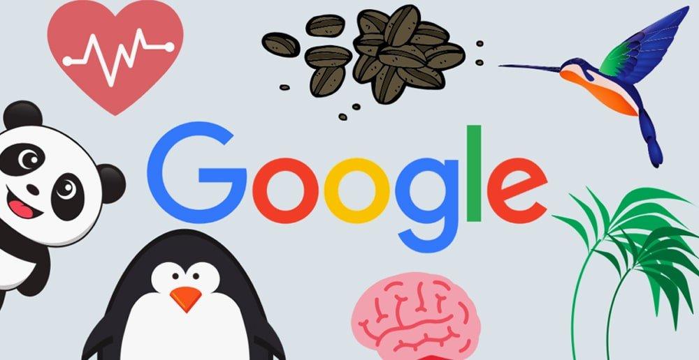 Google Algoritma Güncellemeleri ve SEO'ya Etkisi